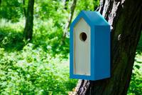 Ptačí budka Emma Turquoise