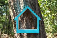 Ptačí krmítko Stella Turquoise
