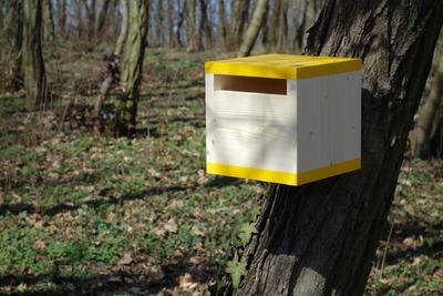 Ptačí budka Rubikus Dijon - 1