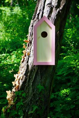 Ptačí budka Emma Pinky - 1
