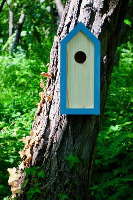 Ptačí budka Emma Turquoise - 1