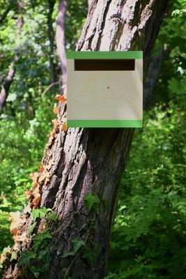 Ptačí budka Rubikus Avocado - 1