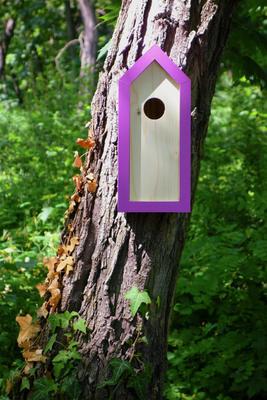 Ptačí budka Emma Lavender - 1