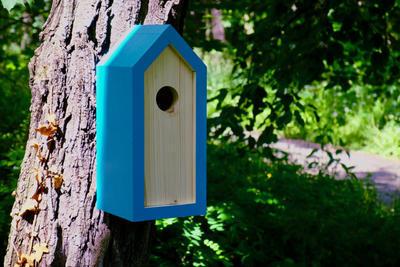 Ptačí budka Emma Turquoise - 2