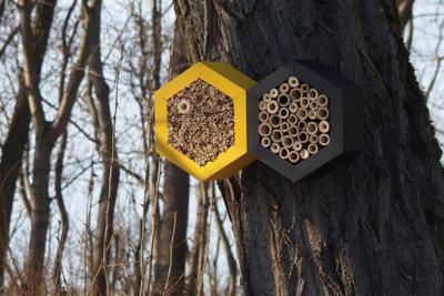Včelí grand hotel - 2