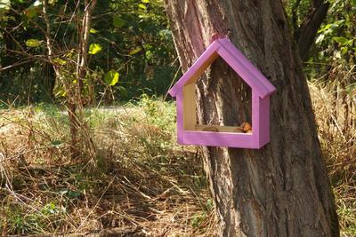 Ptačí krmítko Stella Lavender - 2