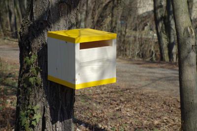 Ptačí budka Rubikus Dijon - 3