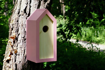 Ptačí budka Emma Pinky - 3
