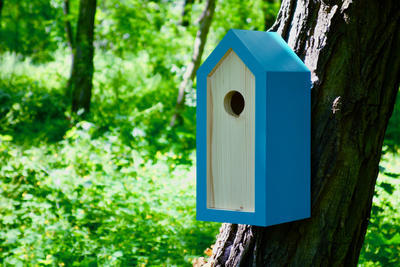 Ptačí budka Emma Turquoise - 3