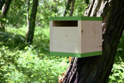 Ptačí budka Rubikus Avocado - 3