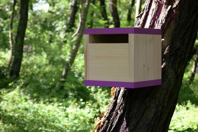 Ptačí budka Rubikus Lavender - 3
