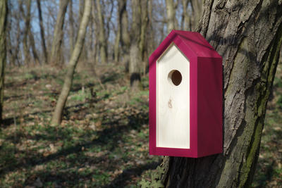 Ptačí budka Emma Burgundy - 4