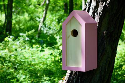 Ptačí budka Emma Pinky - 4