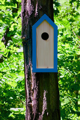 Ptačí budka Emma Turquoise - 4