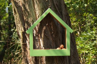 Ptačí krmítko Stella Avocado - 4