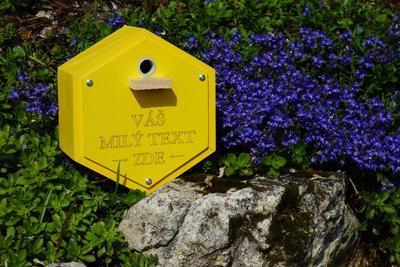 Originální čmelín s vlastním textem, Dijon - žlutá - 5
