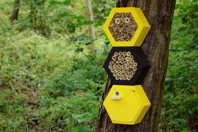 Včelí superior hotel - 5