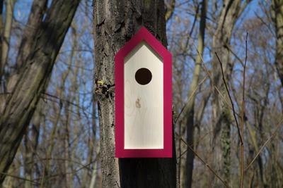Ptačí budka Emma Burgundy - 5