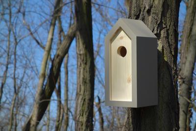 Ptačí budka Emma Mouse - 5