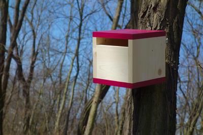 Ptačí budka Rubikus Burgundy - 5