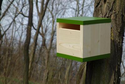 Ptačí budka Rubikus Fern - 5