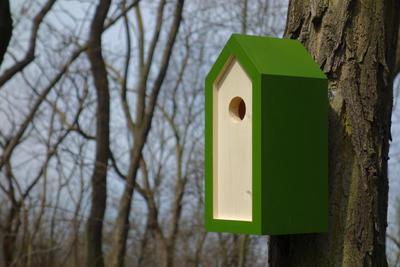 Ptačí budka Emma Fern - 5