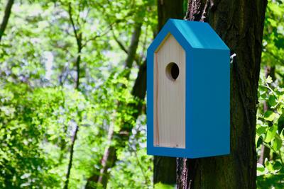Ptačí budka Emma Turquoise - 5