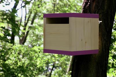 Ptačí budka Rubikus Lavender - 5