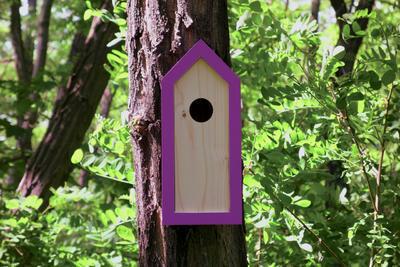 Ptačí budka Emma Lavender - 5