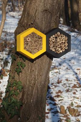 Včelí grand hotel - 5
