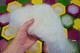 Čmelín grand Mouse - 6/6