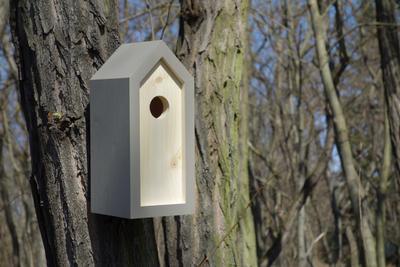 Ptačí budka Emma Mouse - 6