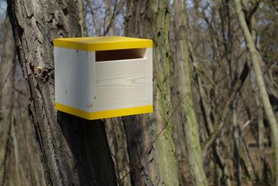 Ptačí budka Rubikus Dijon - 6