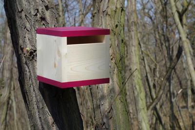 Ptačí budka Rubikus Burgundy - 6