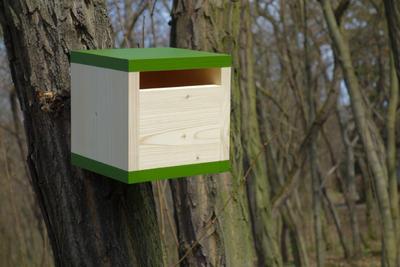 Ptačí budka Rubikus Fern - 6