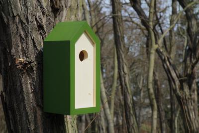 Ptačí budka Emma Fern - 6