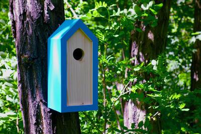 Ptačí budka Emma Turquoise - 6