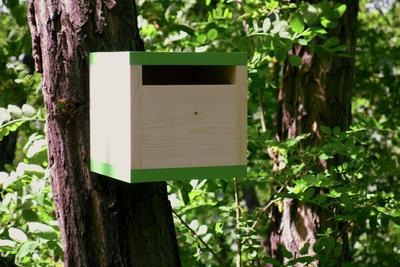 Ptačí budka Rubikus Avocado - 6