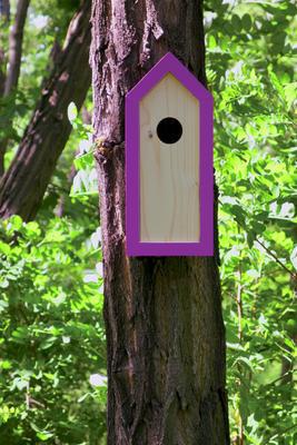 Ptačí budka Emma Lavender - 6